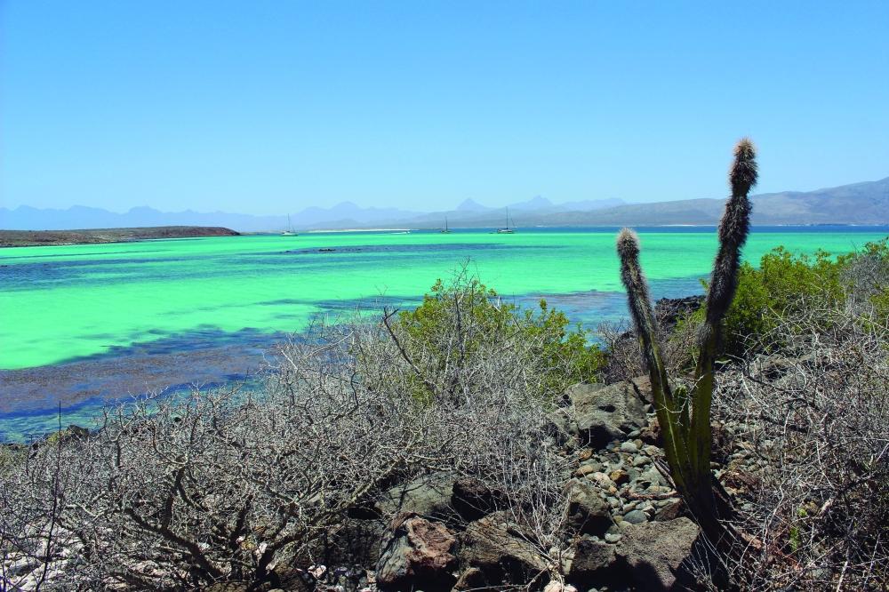 Isla Coronado- Municipio de Loreto (2)